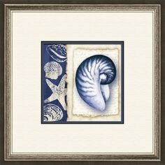 Double-matted seashell print in champagne-finished frame. Made in the USA.  Product: Framed printConstruction Materi...