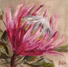 Pretty Protea painting (oil on canvas)—exotic flower—great colors❣ study #131 - paintings in the Post