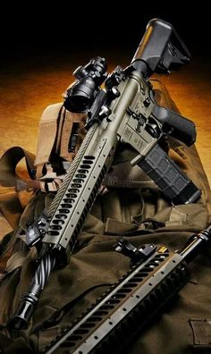 LWRC self defense, protection, amendment, America, munitions Assault Weapon, Assault Rifle, Tactical Rifles, Firearms, Tactical Survival, Shotguns, Weapons Guns, Guns And Ammo, Cool Guns