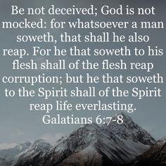 Bible Encouragement, Bible Verses Quotes, Bible Scriptures, Faith Quotes, Prayer Images, Moonflower, Biblical Inspiration, Bible Truth, Jehovah