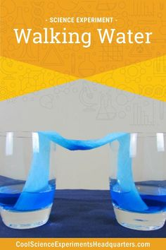Can water walk upwards against gravity? 💦 No, not really, but what makes water seem like it defies gravity is what we explore in this easy science experiment! #scienceexperiments #scienceforkids #STEM #colormixing #walkingwater #coolscienceexperimentshq