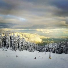 #mtseymour #canada #snow #ski #snowboarding #mountain #bestofworldtravel #topview #travel #worldtravel #backpacker