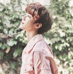 Jaemin he's so beautiful