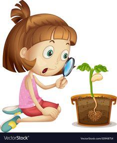 Girl observing plant growing in pot vector image on VectorStock