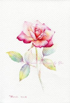 "PRINT – Rose Watercolor painting 7.5 x 11"" - Artist... Yui  from Bangkok Thailand"