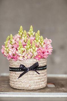 from jane packer flower