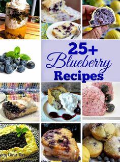 Plump, juicy Blueberry recipes ~ Ice-Cream, Cake, Desserts                   #BlueberryRecipes #Desserts