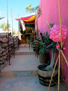 San Jose del Cabo San Jose Del Cabo, Cabo San Lucas, Places Ive Been, Places To Go, San Diego Houses, Baja California, My Happy Place, Beautiful World, Traveling