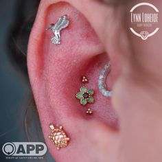 Healed triple conch, daith, and flat and fresh high lobe with bvla, Maria tash, and sleeping goddess by Lynn at Amato! Maria Tash, Daith, Body Piercings, Floral Centerpieces, Conch, Compliments, Turtle, Diamond Earrings, Instagram