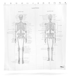 ThinkGeek :: Human Skeleton Shower Curtain