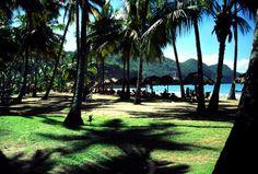 24/42 Peninsula de Paria, Estado Sucre, Venezuela. Playa Medina. Medina Beach.