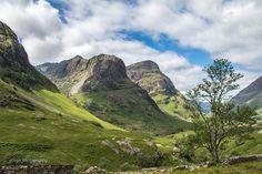 The Sisters of Glencoe - by Tom McCluskie