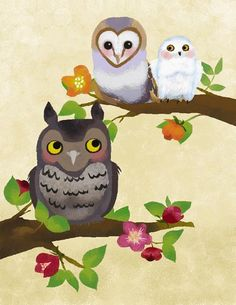 owl trio by Amy Schimler