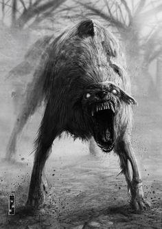 cane ferox by matteospirito on DeviantArt Dark Fantasy Art, Arte Horror, Horror Art, Fantasy Creatures, Mythical Creatures, Scary Wolf, The Crow, Werewolf Art, Fantasy Beasts