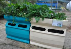 Aquaponic grow bed  Available from backyardaquaponics.com
