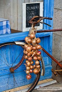 Onions from Roscoff - Brittany - France