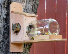 NutHouse Squirrel Jar Feeder - Great Gift and Entertainment for You and Your Squirrels Diy Wood Projects, Outdoor Projects, Garden Projects, Wood Crafts, Squirrel Feeder Diy, Squirrel Home, Bird House Feeder, Bird Feeders, Lawn And Garden