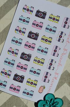 Adorable Camera stickers for your Plum Paper Planner, Erin Condren Life Planner and Filofax