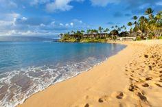 42nd Annual Maui Marathon & Half Marathon - one day...
