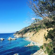 November Big Sur collection, compliments of Mother Nature. . . . . #latergram #bigsur #california #sundayfunday #instagood #greatoutdoors #bluesky #pacificocean #centralcoast #calocals - posted by CJ https://www.instagram.com/cjbogus - See more of Big Sur, CA at http://bigsurlocals.com