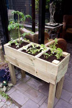 Wil je graag je eigen groenten of kruiden kweken, maar beschik je niet over de ruimte voor een eigen moestuin? Dan is deze moestuinbak DIY iets voor jou!
