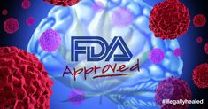 By: Justin Kander On September 29th, 2014, Insys Therapeutics announced that the United States Food and Drug Administration had granted orphan drug designation to its proprietary cannabidiol product for the treatment of glioma. (A glioma...