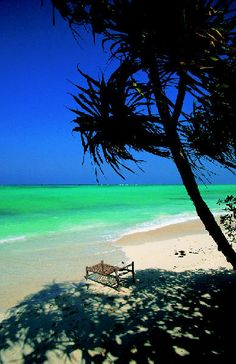 Zanzibar - Natural Splendour