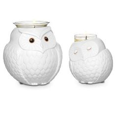 Nature's Love™ by PartyLite Mama & Baby Owl Set