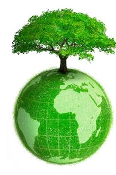 Green Tree on top of the Earth