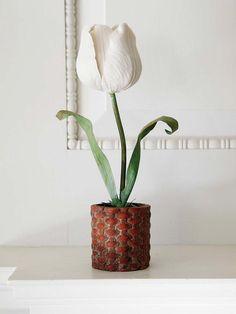 Las esculturas botánicas de Vladimir Kanevsky