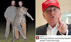 Trump defends his big-game hunting sons as they are shamed after Cecil...There is a chapter in ernest that say EDIT SOBER...made lot´s of sense at the time for ammachos...:)