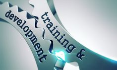 Relevance of Learning versus Relevance of Training and Development | Your Training Edge