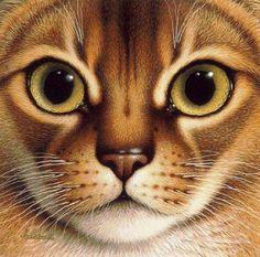 Google Afbeeldingen resultaat voor http://artforsalediscount.com/art-images/original/original-the-head-of-a-lovely-cat-7380.jpg