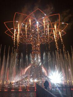 L'emozione dell'Albero della vita- Expo 2015