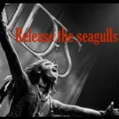 RELEASE THE SEAGULLS! Hahahahahhahahahah laughed way harder at this then I should've!