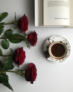 Book Aesthetic, Aesthetic Photo, Book Photography, Portrait Photography, Coffee Presentation, Page Layout Design, Floral Logo, Food Backgrounds, Coffee And Books