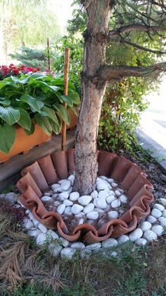 Smart idea! Use roofing tiles and rocks to create a border around your (pine) trees #border #tree #roofingtiles #rocks #greendreams