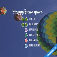 Happy Headspace - Essential Oil Diffuser Blend
