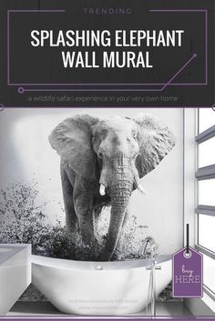 Wall murals are becoming more and more popular so spice up your bathroom with this Splashing Elephant Wallpaper and give it a whole new look and feel. Ocean Mural, Beach Wall Murals, Wall Art, Wildlife Photography Tips, Elephant Wallpaper, Forest Mural, Floor Murals, Bamboo Wall, Wildlife Safari