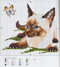 Gallery.ru / Фото #14 - Cats - OlgaHS