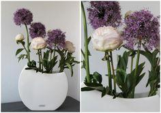 Blumendeko XXL TIZIANO Fardella