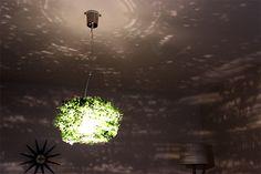 【楽天市場】【送料無料】ペンダントライト 1灯 オーランド ビッグ[ORLAND-BIG]ディクラッセ[DI ClASSE]LP3005GR【照明 照明器具…