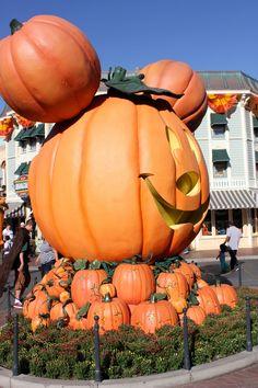 Amazing Disneyland Jack o Lanterns!