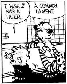Calvin and Hobbes - I wish I was a tiger.