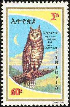 Abyssinian Owl stamps - mainly images - gallery format