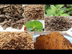 These are our favorite top ayurvedic herbs or rasayanas used in the system of Ayurveda to energize and deeply nourish reproductive health as well as digestiv...