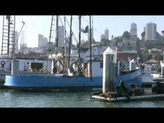San Francisco Travel Guide - http://usa-mega.com/san-francisco-travel-guide/