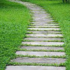 Rectangular stone path