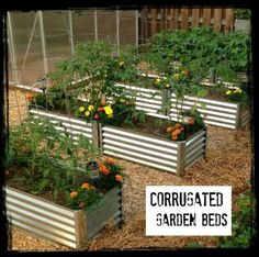 Corrugated Raised Garden Beds---Unique Garden Beds You'll Love