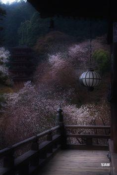 Hase-dera temple, Nara, Japan 長谷寺 奈良